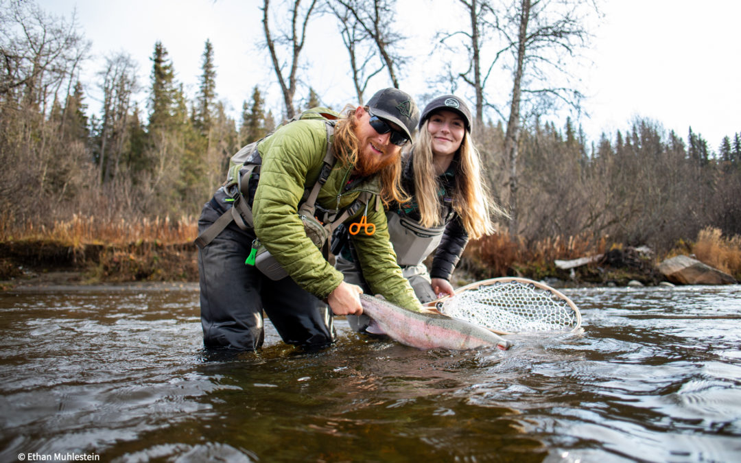 Steelhead Conservation in the Last Frontier