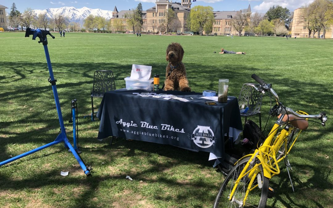 Save Aggie Blue Bikes
